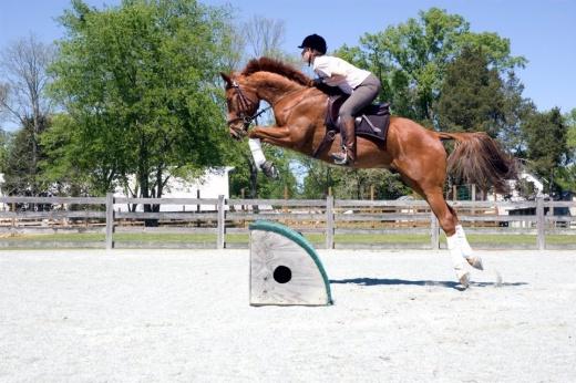 Baron jumping