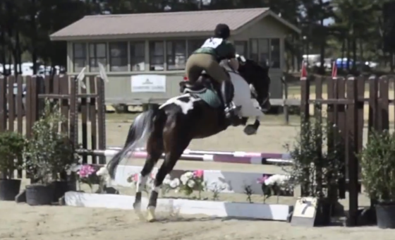 Showjumping at the Carolina Horse Park