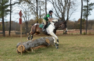 Breezing over a Novice fence