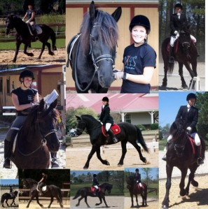 Yes, I so loved this horse I made sappy photo collages of us together.