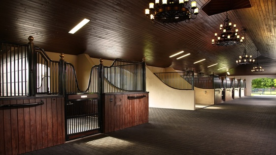 Most of us frequent barns of the non-chandelier sort / PC: Pegasus Builders