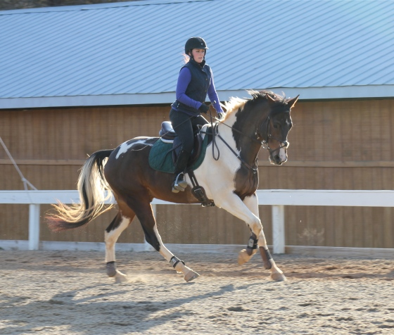 Getting a good canter back in February