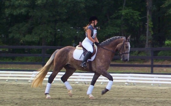 For instance, doing dressage in a dressage saddle is a preferred tack choice...