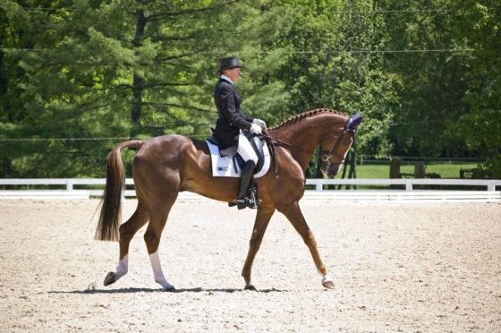 Ermahgerd Mr. Medicott, hopefully we will see him in the 2* with P-Dutty