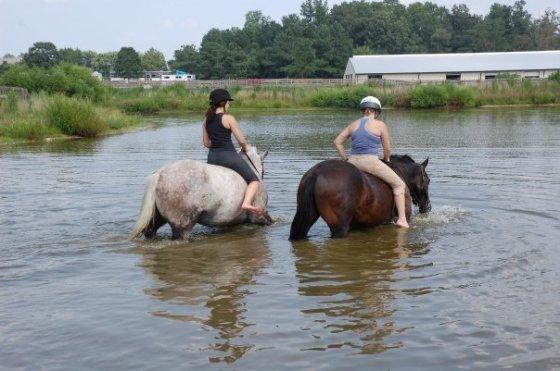 pond riding