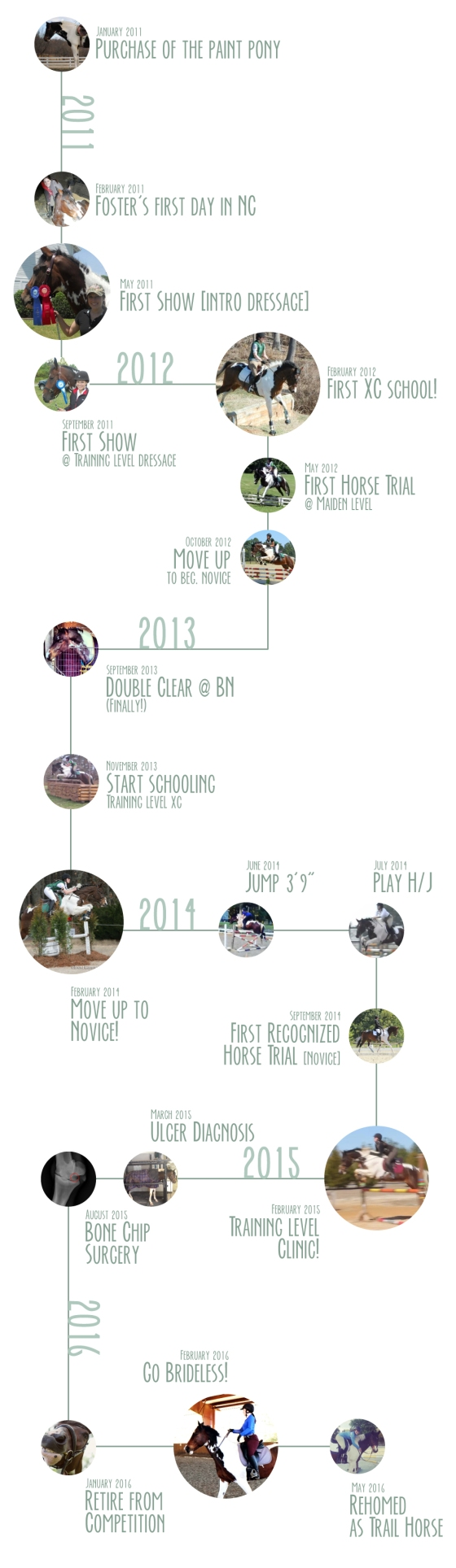 FosterInfographic_timeline