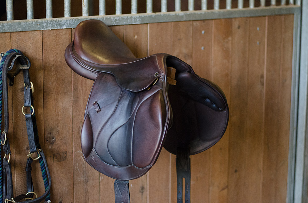 Human Pony Saddle Related Keywords Human Pony Saddle