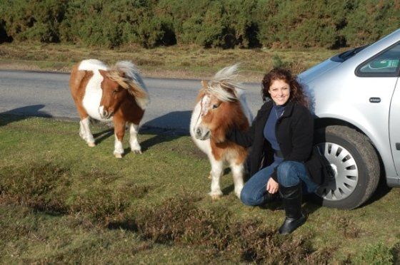 Hanging out with feral ponies in the New Forest